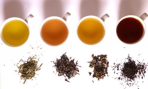 Người bị sốt xuất huyết không nên uống trà