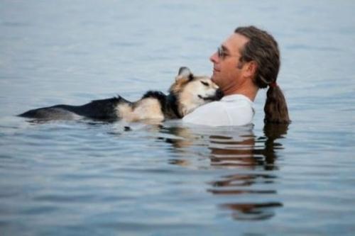 Mỗi ngày, người đàn ông này đều mang chú chó bệnh tật của mình ra hồ nước và cùng ngâm mình với chú, vì nước có thể giúp chú chó đỡ đau đớn hơn.